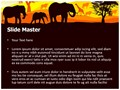 African Wildlife Editable PowerPoint Template