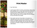 Book of Fruits Editable PowerPoint Template