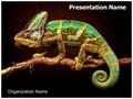 Chameleon Editable PowerPoint Template