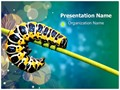 Butterfly Larvae Editable PowerPoint Template