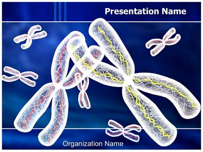 Chromosomes Structure Editable PowerPoint Template
