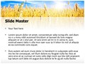 Wheat Field Editable PowerPoint Template