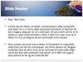 Fertilization Soil Check Editable PowerPoint Template