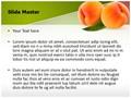 Ripe Peach Fruit Editable PowerPoint Template
