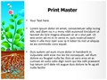 Plant Photosynthesis Editable PowerPoint Template