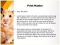 Hamster Editable PowerPoint Template