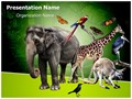 Zoology Editable PowerPoint Template