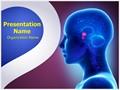 Brain Pituitary Gland Editable PowerPoint Template