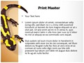 Toxic Amphibian Editable PowerPoint Template