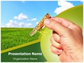 Agricultural Entomology Editable PowerPoint Template
