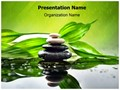 Spa Concept Editable PowerPoint Template