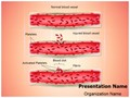 Blood Clotting Process Editable PowerPoint Template