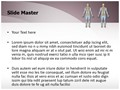 Human Bony System Editable PowerPoint Template