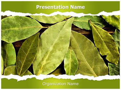 Bay Leaves Editable PowerPoint Template