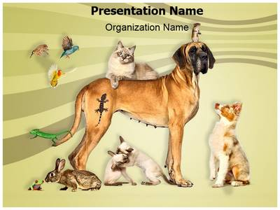 Animals Pets Editable PowerPoint Template