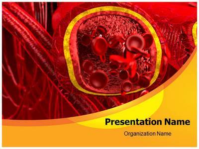 Blood Arteries And Veins Editable PowerPoint Template