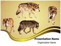 Wildlife Wolf Editable PowerPoint Template