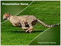 Cheetah Editable PowerPoint Template
