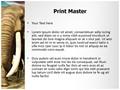 African Elephant Editable PowerPoint Template