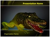 Chimera Genetics Frog Crocodile Template