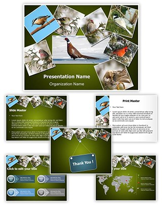 Ornithology Collage Editable PowerPoint Template