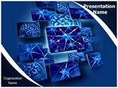 Neuron Function PowerPoint Templates