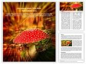 Amanita poisonous mushroom Template