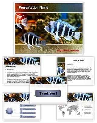 Professional zebra fish editable powerpoint template zebra fish editable powerpoint template toneelgroepblik Images