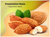 Almonds with Kernels Editable PowerPoint Template