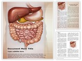 Abdominal compartment syndrome Template