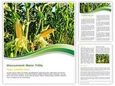 Corn Field Editable Word Template