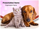 Kitten And Dog Editable PowerPoint Template