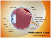 Retinal detachment PowerPoint Templates