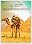 Pyramids Camel