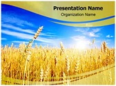 Wheat Field PowerPoint Templates