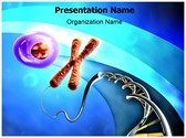 Chromosome Editable PowerPoint Template