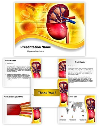 Human Kidney Editable PowerPoint Template