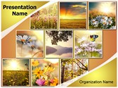 Summer Flower Collages Template