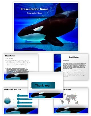 Killer Whale Editable PowerPoint Template