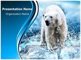 Polar Bear Editable PowerPoint Template
