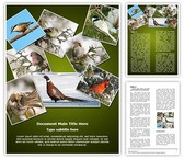 Ornithology Collage Template