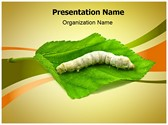 Silkworm Editable PowerPoint Template
