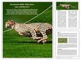 Cheetah Editable Word Template