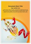 Animal Digestive System