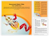 Animal Digestive System Template