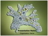 Amoeba Editable PowerPoint Template