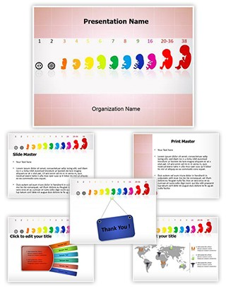 Fetus Stages Editable PowerPoint Template