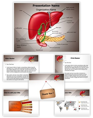 Gastrointestinal Organ System Editable PowerPoint Template