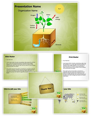 Plant Schematic Photosynthesis Editable PowerPoint Template