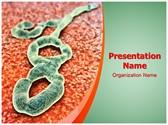 Ebola Virus Editable PowerPoint Template